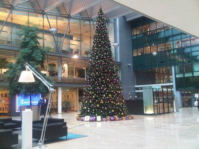650 cm grote kerstboom huren