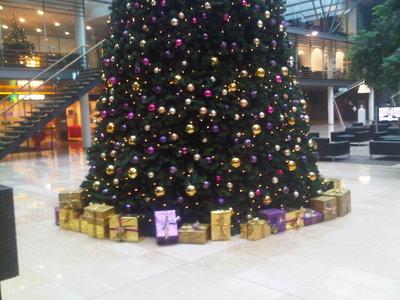 440 cm grote kerstboom huren
