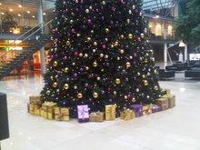 440-cm-grote-kerstboom-huren